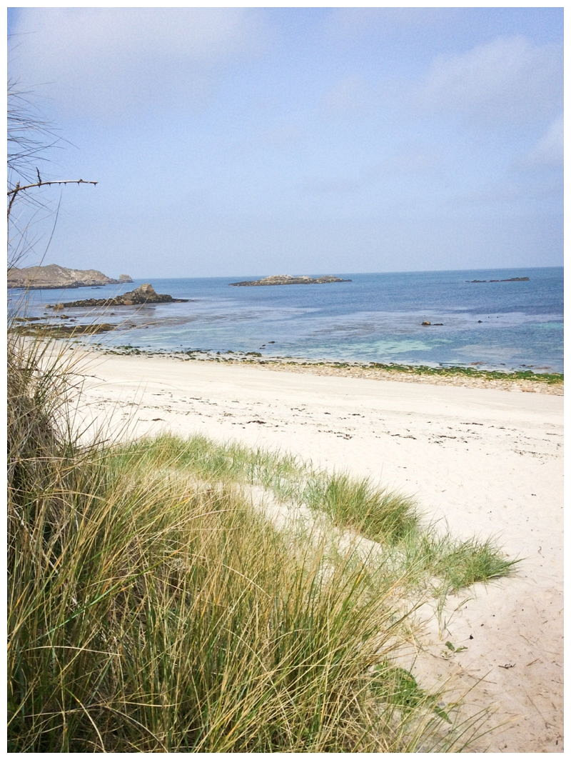 Scilly isles_2401